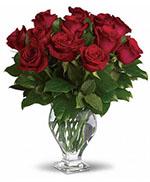 Teleflora's Rose Classique